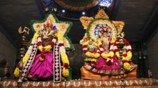 Naangaam Thiruvilaa (Kaalai) - Mahotsavam 2014 (56)