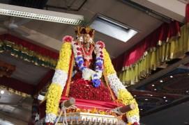 Onbathaam Thiruvilaa (Therthiruvilaa) - Mahotsavam 2014 (165)