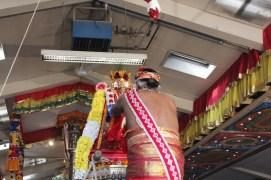 Onbathaam Thiruvilaa (Therthiruvilaa) - Mahotsavam 2014 (176)