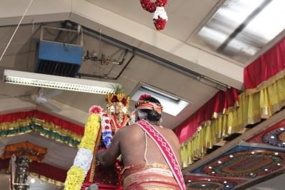 Onbathaam Thiruvilaa (Therthiruvilaa) - Mahotsavam 2014 (178)