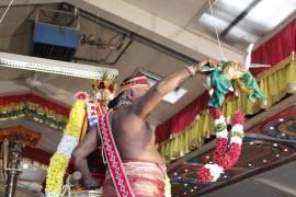 Onbathaam Thiruvilaa (Therthiruvilaa) - Mahotsavam 2014 (183)