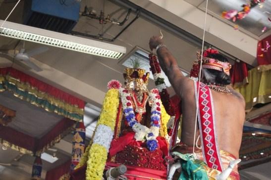 Onbathaam Thiruvilaa (Therthiruvilaa) - Mahotsavam 2014 (193)