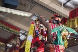 Onbathaam Thiruvilaa (Therthiruvilaa) - Mahotsavam 2014 (194)