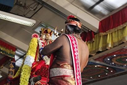 Onbathaam Thiruvilaa (Therthiruvilaa) - Mahotsavam 2014 (199)
