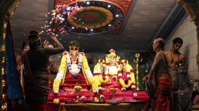 Onbathaam Thiruvilaa (Therthiruvilaa) - Mahotsavam 2014 (24)
