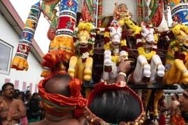 Onbathaam Thiruvilaa (Therthiruvilaa) - Mahotsavam 2014 (250)