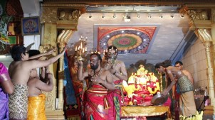 Onbathaam Thiruvilaa (Therthiruvilaa) - Mahotsavam 2014 (34)