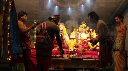 Onbathaam Thiruvilaa (Therthiruvilaa) - Mahotsavam 2014 (7)