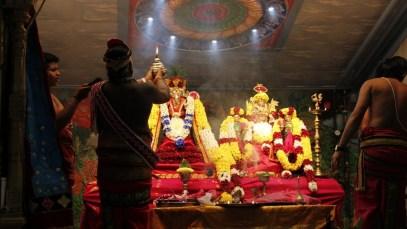 Onbathaam Thiruvilaa (Therthiruvilaa) - Mahotsavam 2014 (8)