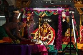 PaththaamThiruvilaa (Kodiyirakkam) - Mahotsavam 2014 (3)