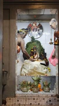 பத்தாம் திருவிழா – தீர்த்தம் (மகோற்சவம் 2014) 24