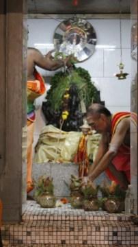 பத்தாம் திருவிழா – தீர்த்தம் (மகோற்சவம் 2014) 20