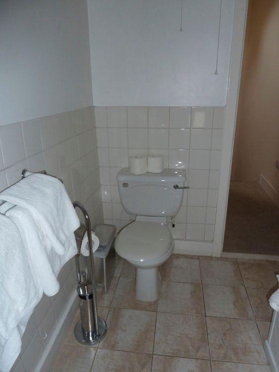World's Noisiest Toilet
