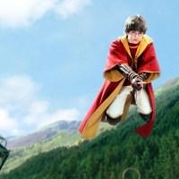 Harry Potter e la scopa vibrante