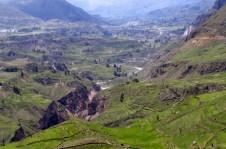 Arequipa,Colca,Peru (117) (800x533)