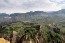 Arequipa,Colca,Peru (82) (800x533)