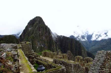 Machu Picchu, Peru (156) (800x533)