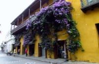 Cartagena, Colombia (59) (800x533)
