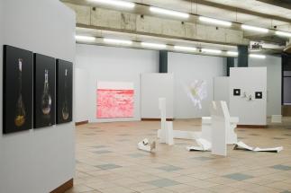 Left: T. Schubert | Somniferous observatory series | 2011 Mid/left: V. Torrado | ERN 3 | 2011 Mid/right: K. Ganser | Raw Scan Loop | 2013 Right: T. Schubert | Growing Geometries (tattooing mushrooms) | 2015 Front: C. Dupaquier | Wracks 1-7 | 2011-2016