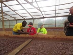 R&R, Randy & Patton Cocoa beans drying