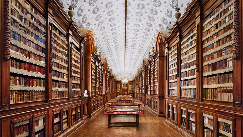 Immagine di evidenza della Biblioteca Palatina