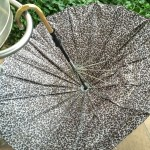 Discarded umbrella