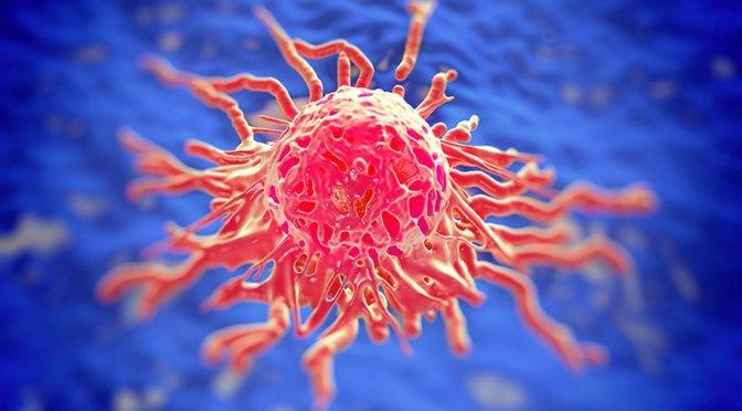 Celebrarán primer Día de Concientización del virus del papiloma humano