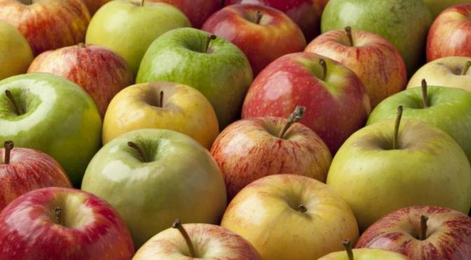 Buena cosecha de frutas para temporada decembrina: Sader