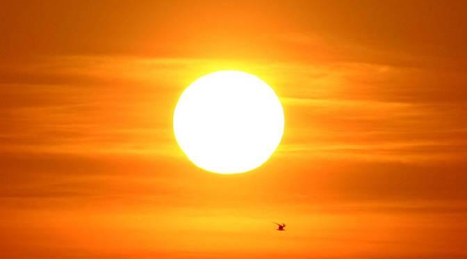 El sol, una asombrosa estrella de la vida