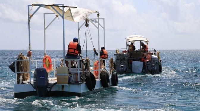 Gobierno de Solidaridad instala barrera para combatir el sargazo en Playa del Carmen