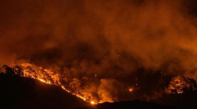 Incendios siguen arrasando montes en Grecia y Francia