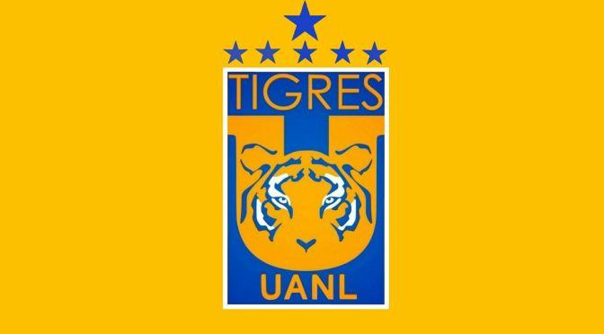 Nace Acceso Tigres por afizzionados