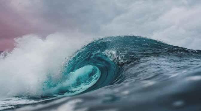 Cómo la temperatura del océano determina la biodiversidad marina