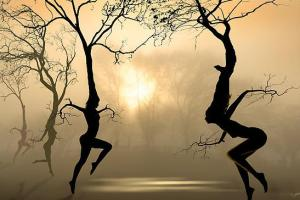 tree-dance