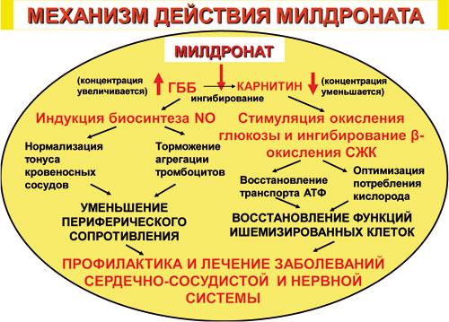 Listopads Andrei Vasilyevich.