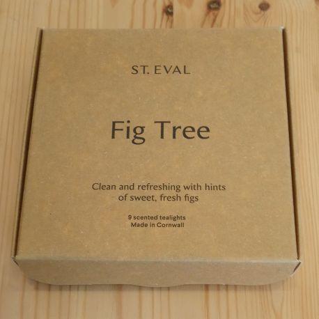 Fig Tree Tea Lights – Boxed