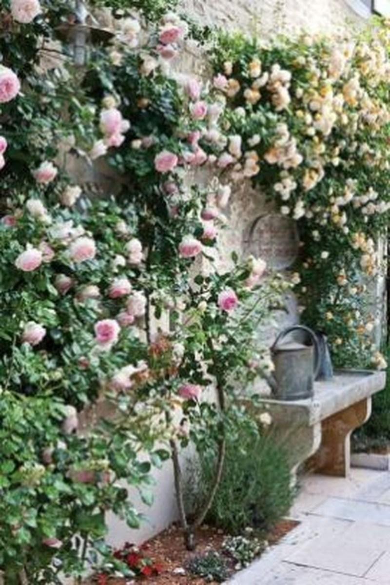 Amazing Small Courtyard Garden Design Ideas 41
