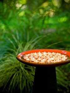 Inspiring Outdoor Lighting Ideas For Your Garden 12