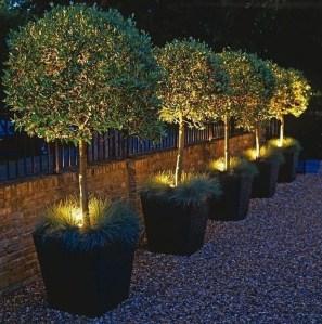 Inspiring Outdoor Lighting Ideas For Your Garden 15