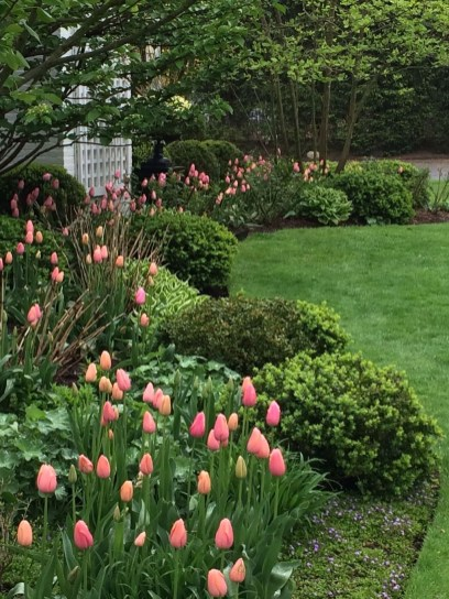 Lovely Small Flower Gardens And Plants Ideas For Your Front Yard 30