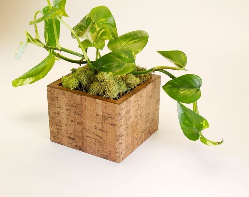 Stunning Small Planters Ideas To Maximize Your Interior Design 04