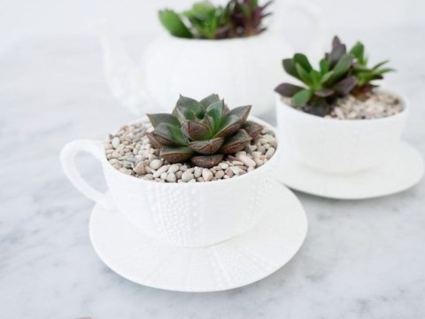 Stunning Small Planters Ideas To Maximize Your Interior Design 37