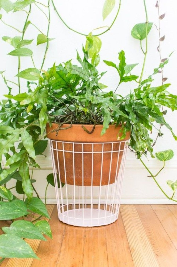 Stunning Small Planters Ideas To Maximize Your Interior Design 41