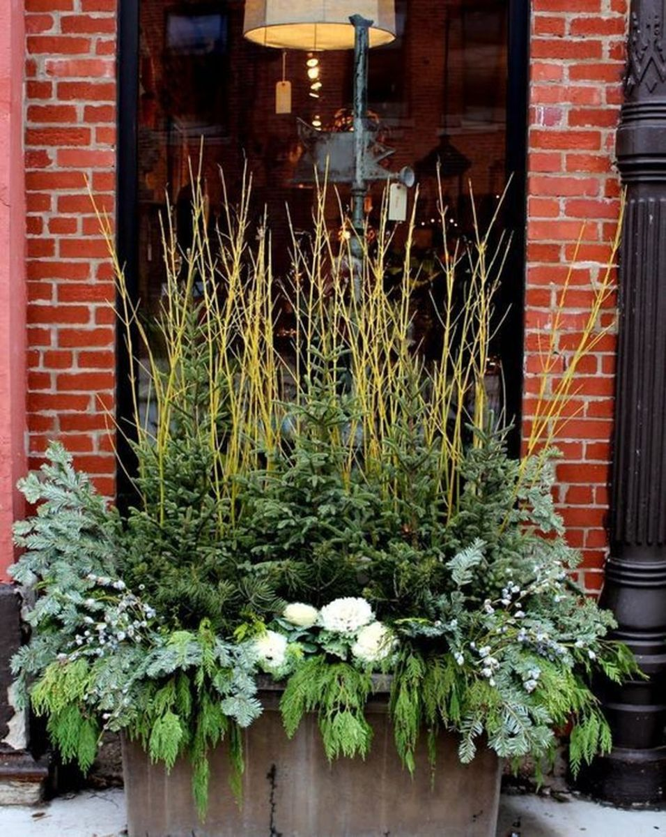 Perfect Outdoor Winter Planters Ideas 39