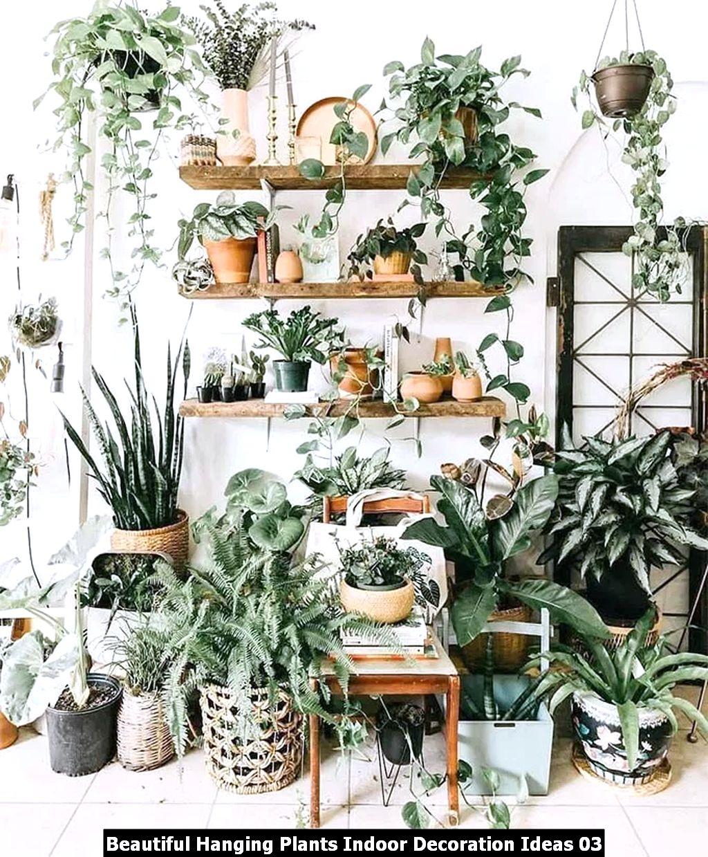 Beautiful Hanging Plants Indoor Decoration Ideas 03