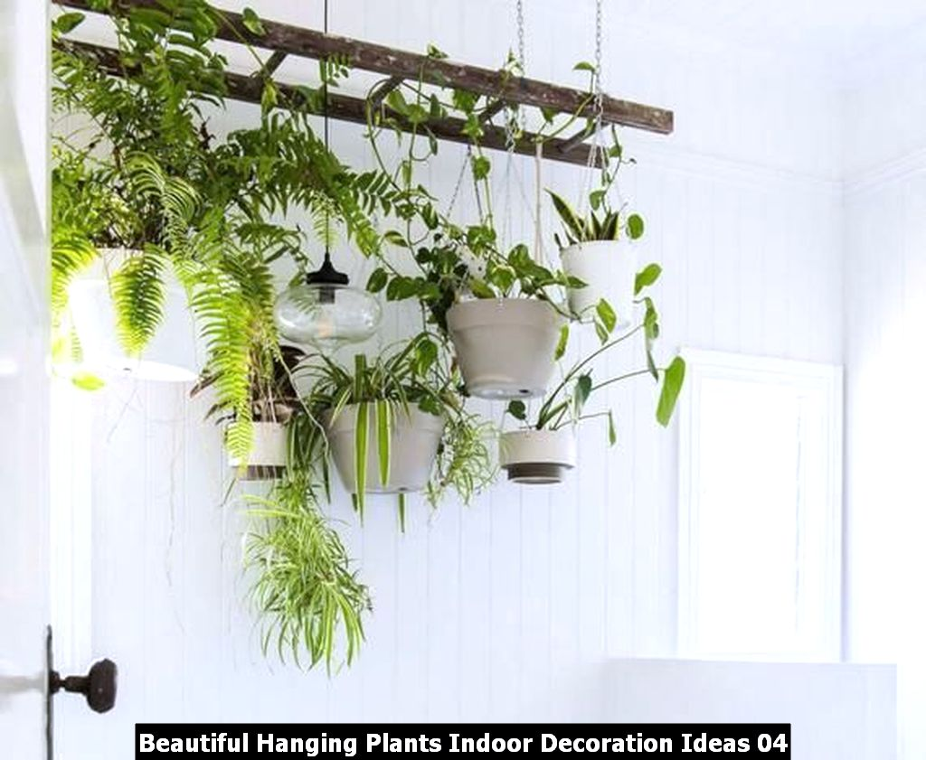 Beautiful Hanging Plants Indoor Decoration Ideas 04