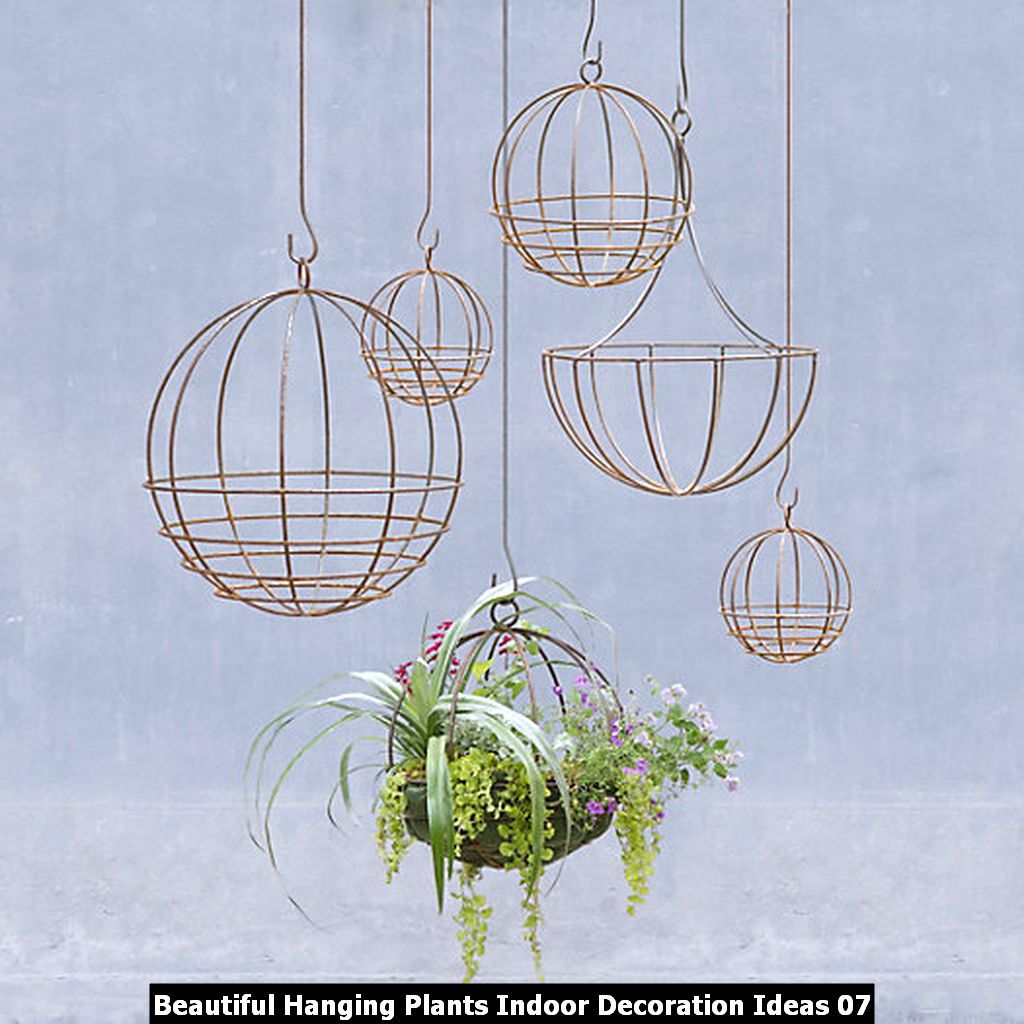 Beautiful Hanging Plants Indoor Decoration Ideas 07