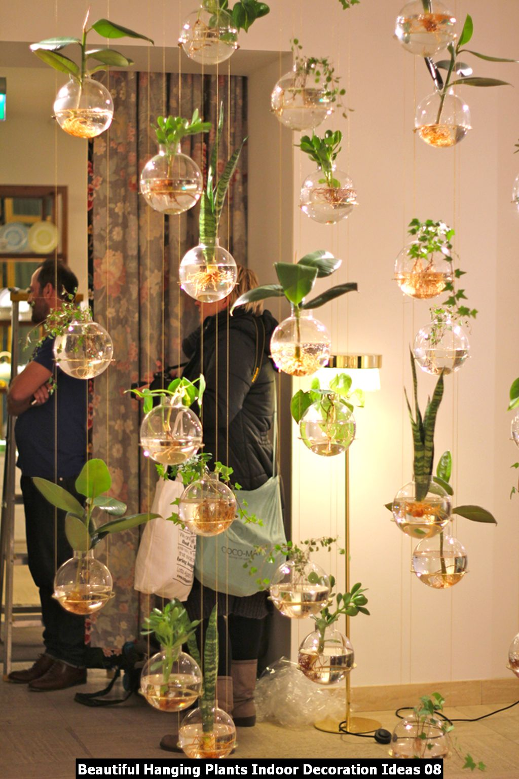 Beautiful Hanging Plants Indoor Decoration Ideas 08