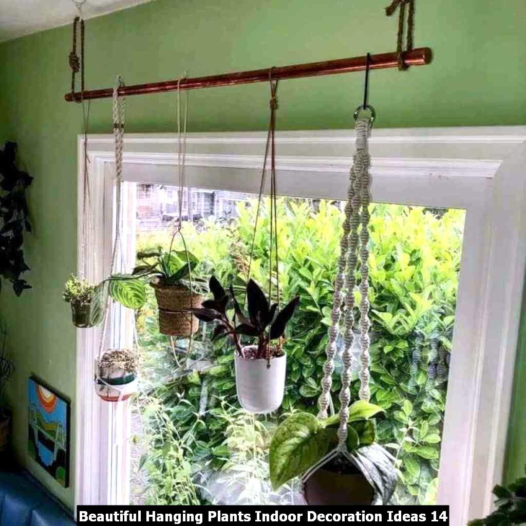 Beautiful Hanging Plants Indoor Decoration Ideas 14