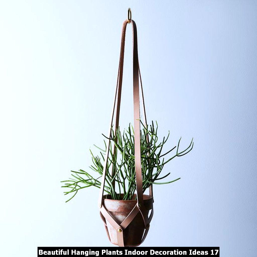 Beautiful Hanging Plants Indoor Decoration Ideas 17